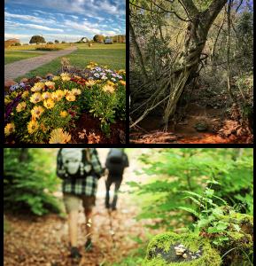 trilhas ecológicas trilha e caminhada tenondé park hotel sao miguel das missões